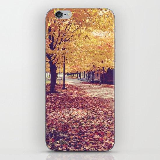 The Autumn Path iPhone & iPod Skin
