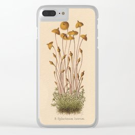 1800s Moss Lithograph Splachnum Luteum Clear iPhone Case