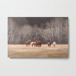 Hidden Spirits Metal Print