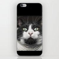 kitty iPhone & iPod Skins featuring Kitty Cat by Joao Bizarro
