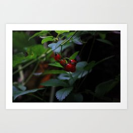buggy on a berry Art Print