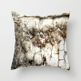 Lead Paint Forever Throw Pillow