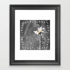 White daisy on a grey day Framed Art Print