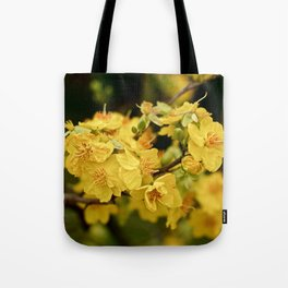 GOLDEN APRICOT Tote Bag