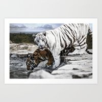 tigers Art Prints featuring Tigers by Pawel Denkowicz