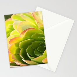 BEAUTIFUL SUCCULENT Stationery Cards