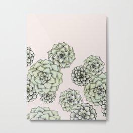 Rosette Succulents Metal Print