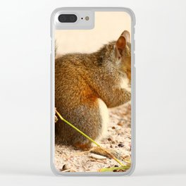 Squirrels Meal Clear iPhone Case
