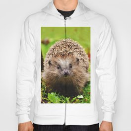 Cute Little Hedgehog Hoody