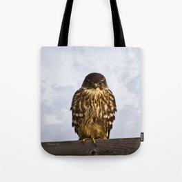Merlin Falcon Tote Bag