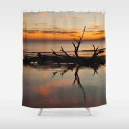 Driftwood on the beach at sunrise Shower Curtain