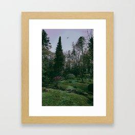 flight over the japanese gardens Framed Art Print