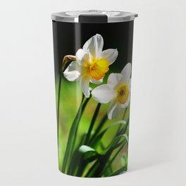 Beautiful Daffodils in Spring Bloom Travel Mug