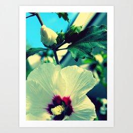 tiki flower with bud ~ flower photography Art Print