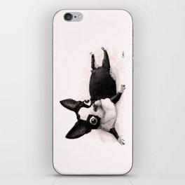 The Little Fat Boston Terrier iPhone Skin