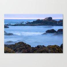 Pescadero Marsh Preserve Canvas Print