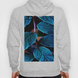 Peacock Blue Leaves Nature Background #decor #society6 #buyart Hoody