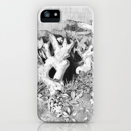 Transitions in nature part 3 iPhone Case