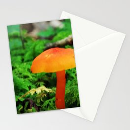 Single Mushroom Surrounded by Moss Stationery Cards