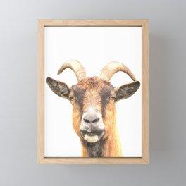Goat Portrait Framed Mini Art Print