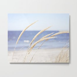 Beach Grass Blue Photography, Coastal Ocean Landscape, Sea Seashore Seascape Shore Metal Print