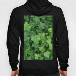 Creeping Ground Cover Hoody