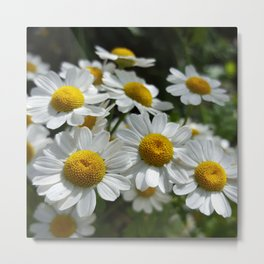 Palpable Happiness Metal Print