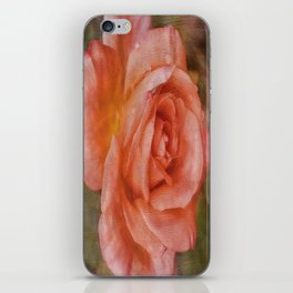 Simply A Rose iPhone Skin