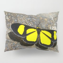 Yellow Butterfly Pillow Sham