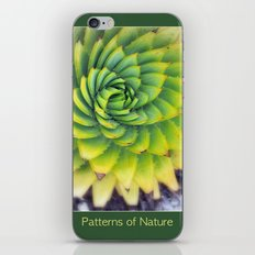 Patterns of Nature - succulent I iPhone & iPod Skin