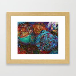 succulent splash Framed Art Print
