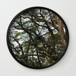 wild forest on the kepler track Wall Clock