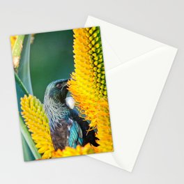 Tui Feed Stationery Cards