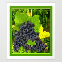 Decorative Dark Purple Wine Grapes Green Leaves Art. Art Print