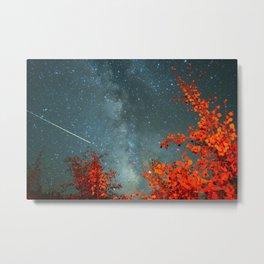 Fall Stars Metal Print