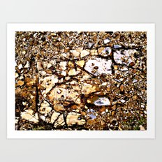 HeadlandRock4a Art Print