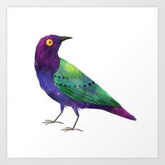Purple Glossy Starling Art Print