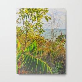 Summer adventures through nature Metal Print