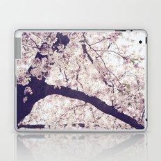 Surround Me Laptop & iPad Skin