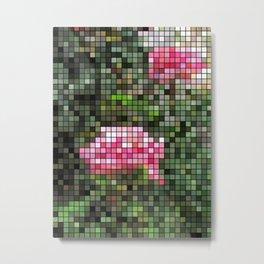 Pink Roses in Anzures 5  Mosaic Metal Print
