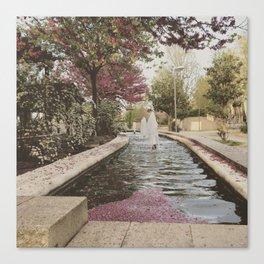 Petal Fountain Canvas Print