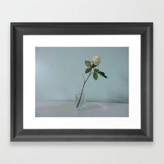 A Single Flower Framed Art Print