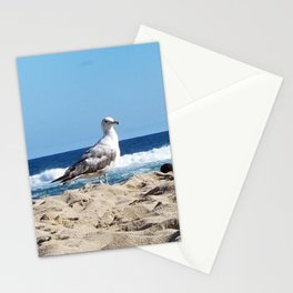 Seagull on the beach Stationery Cards