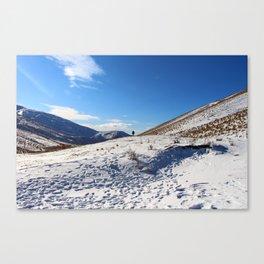 New Zealand Snow Print Canvas Print