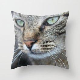 Thoughtful Cat Throw Pillow