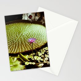 Life Upon A Lily Pad Stationery Cards