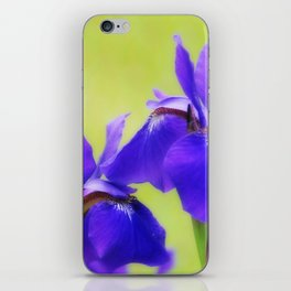 Irises iPhone Skin