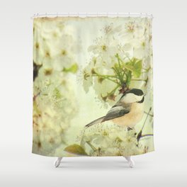 Black Capped Chickadee on Spring Flower A160 Shower Curtain
