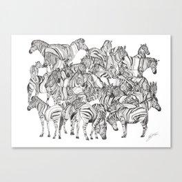 Zebras // Graphite Canvas Print