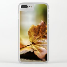 autumn_1 Clear iPhone Case